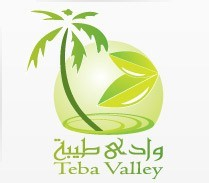 logo design teba vally